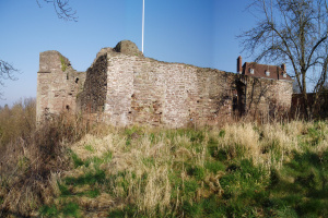 monmouth-castle-before-2