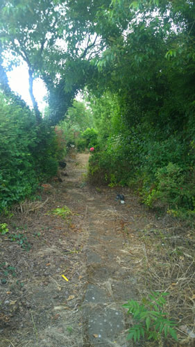 residential-garden-before-1