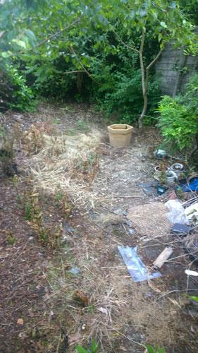 residential-garden-before-3